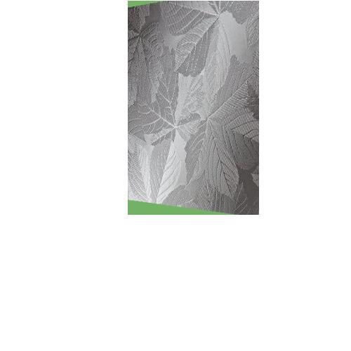 casement-sycamore-cutout